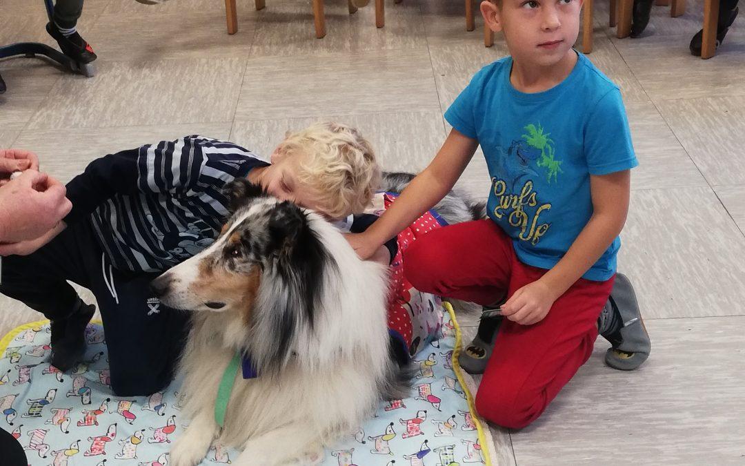 Terapevtski pes pri uri SLJ v 1. razredu